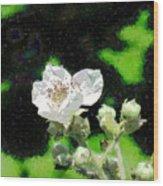 Blackberry Of My Eye Wood Print