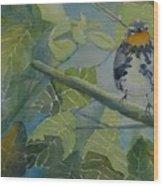 Blackburnian Warbler I Wood Print