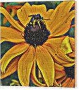 Blackeyed Susan With Bee Wood Print