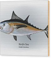 Blackfin Tuna Wood Print by Ralph Martens