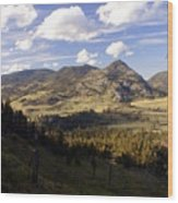 Blacktail Road Landscape Wood Print