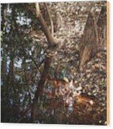 Blackwater Wood Print