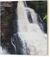 Blackwater Falls #6 Wood Print
