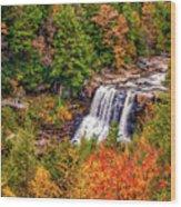 Blackwater Falls Wv Wood Print