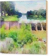 Blanco River Wood Print