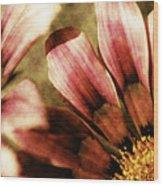 Blanket Flowers Wood Print by Bonnie Bruno