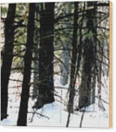 Blanketed In Snow Wood Print