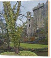 Blarney Castle 3 Wood Print
