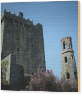 Blarney Castle And Tower County Cork Ireland Wood Print