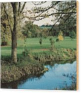 Blarney Castle Grounds Wood Print
