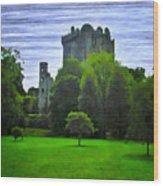 Blarney Castle Ireland Wood Print