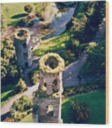 Blarney Castle Ruins In Ireland Wood Print