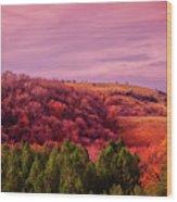 Blazing Autumn Wood Print