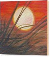 Blazing Sun And Wind-blown Grasses Wood Print