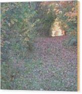 Blazing Trail Wood Print