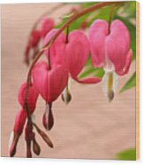 Bleeding Hearts In The Park Wood Print
