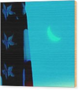 Blessed Are The Peacemakers Wood Print