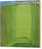 Blimp View Golf Wood Print