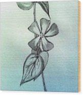 Bliss Wood Print