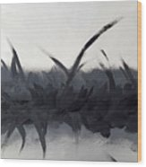 Bliss In Black Wood Print