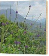 Blissful Purple Wood Print