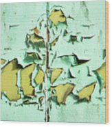 Blistered Paint Wood Print