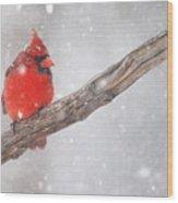 Blizzard Beacon Wood Print