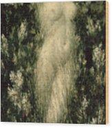 Blodeuwedd Wood Print