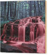 Blood Falls 2 Wood Print