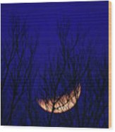 Blood Moon And Winter Trees Wood Print