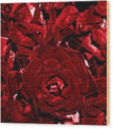 Blood Red Roses Wood Print
