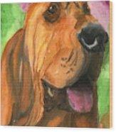 Bloodhound Dog Art Wood Print
