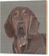 Bloodhound Wood Print