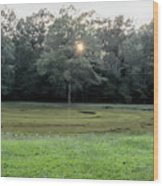 Bloody Pond Shiloh National Military Park Tennessee Wood Print