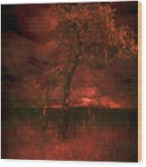Bloody Tree Wood Print