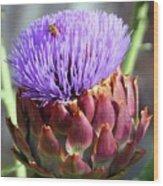 Bloomin Artichoke Wood Print