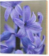 Bloomin Blue Wood Print