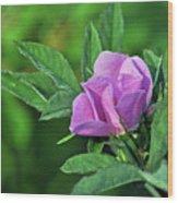 Bloomin Wood Print