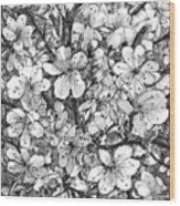 Blooming Apple Tree Wood Print