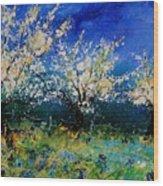 Blooming Appletrees 56 Wood Print