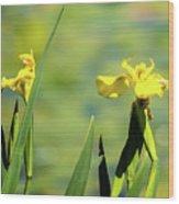 Blooming At Green Lake Wood Print