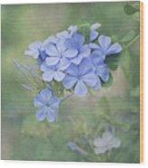 Blooming Blues Wood Print