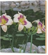 Blooming By The Pond Wood Print