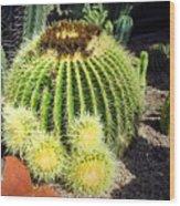 Blooming Cactus Two Wood Print