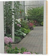 Blooming Conservatory Wood Print