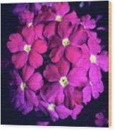 Blooming Crush Wood Print