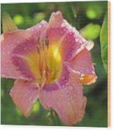 Blooming In Pink Wood Print