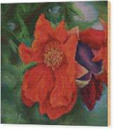 Blooming Poms Wood Print