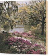Blooming Shrubs And Trees Wood Print