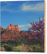 Blooming Tree In Sedona Wood Print